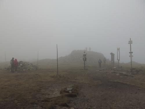 vrchol Králického Sněžníku